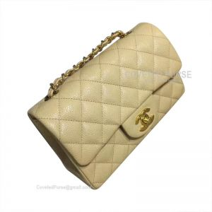 Chanel Small Flap Bag Apricot Caviar With Gold HW