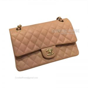 Chanel Medium Flap Bag Caramel Caviar With Gold HW