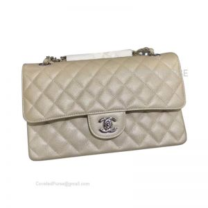 Chanel Medium Flap Bag Champagne Caviar With Silver HW