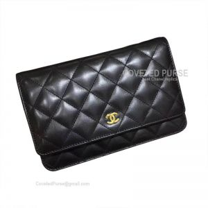 Chanel Flap WOC Lambskin With Gold HW Black