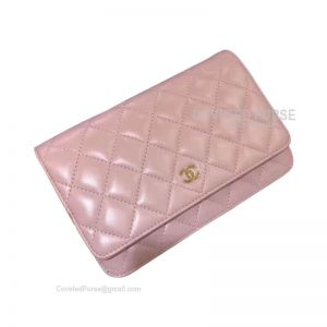 Chanel Flap WOC Lambskin With Gold HW Light Pink
