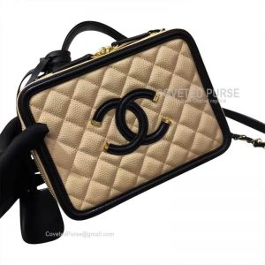 Chanel Vanity Case Small In Nude Caviar With Gold HW